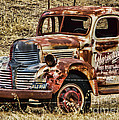 Old Dodge Truck by Ron Roberts