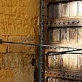 Old Door by Jan Katuin