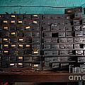 Old Drawers by Amy Cicconi