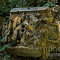 Old Engine Now Rust by M Dale