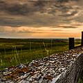 Old Farm Fence  by Maik Tondeur