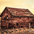 Old Farm House by Robert Bales