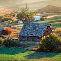 Old Farm In Eastern Washington by Mike Penney