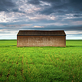 Old Farm Shed In Green Wheat Field by Robert Lang Photography