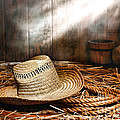 Old Farmer Hat And Rope by Olivier Le Queinec