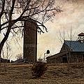 Old Farmstead  by Liane Wright