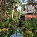 Old Florida Watermill I by W Chris Fooshee