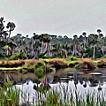 Old Florida Waterway by Alice Gipson