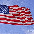 Old Glory by Kerri Mortenson
