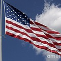 Old Glory by Laurie Eve Loftin