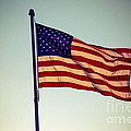 Old Glory by Robert Bales