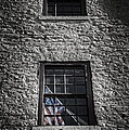 Old Glory by Scott Norris