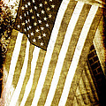 Old Glory Sepia Rustic by Debbie Portwood