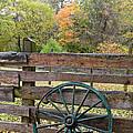 Old Green Wagon Wheel by Cheryl Hardt Art