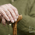 Old Hands Of A Senior On Walking Stick by Juergen Ritterbach