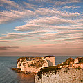 Old Harry Rocks Jurassic Coast Unesco Dorset England At Sunset by Matthew Gibson