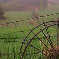 Old Hay Rake Wheels by Jim Vance