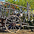 Old Hay Wagon by Phyllis Denton