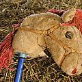 Old Hobby Horse Head by David Kay
