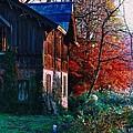 Old Home II by Simonne Mina