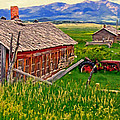 Old Homestead Near Townsend Montana by Michael Pickett