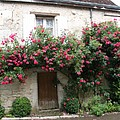 Old House Covered With Roses by Christiane Schulze Art And Photography