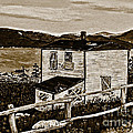 Old House In Sepia by Barbara Griffin