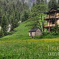 Old House On The Green Field by Mats Silvan