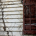 Old House Red Shutter 4 by Robin Lewis