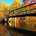 Historic Harvey Bridge Over Manistee River In Wexford County Michigan by Terri Gostola