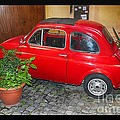 Old Italian Car Fiat 500  by Stefano Senise
