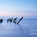 Old Jetty Posts At Sunrise by Colin and Linda McKie
