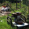 Vintage Lawn Mower by Doc Braham