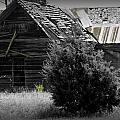 Old Kansas Homestead II by Jeanette C Landstrom