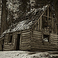 Old Log Cabin by Sherri Meyer
