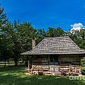 Old Log Cabin Three by Ken Frischkorn