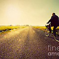Old Man Riding A Bike To Sunny Sunset Sky by Michal Bednarek
