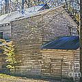 Old Mill  by Elvis Vaughn