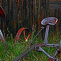 Old Mower by Mike Flynn