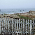 Old Nantucket Fence by Susan Wyman