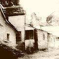 Old Neighborhood by Margie Hurwich