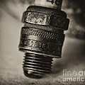 Old Number 48 Spark Plug by Wilma  Birdwell
