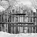 old patched up wooden fence using old bits of wood in snow Forget Saskatchewan Canada by Joe Fox