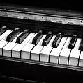 Old Piano Keys by Dave Beckerman