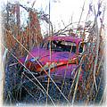 Old Pink Car In The Weeds by K Scott Teeters