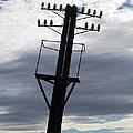 Old Power Pole by Michal Boubin