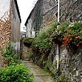 Old Quarter Of La Roche Bernard by Carla Parris