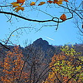 Old Rag Hiking Trail - 121212 by DC Photographer