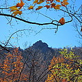Old Rag Hiking Trail - 121213 by DC Photographer