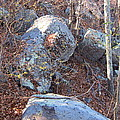 Old Rag Hiking Trail - 121220 by DC Photographer